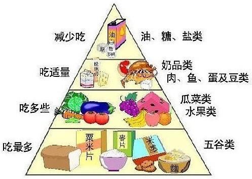 在金字塔的第三层,我们所需要的就是水果类和蔬菜类.